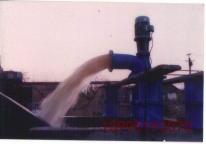 单基础轴流泵