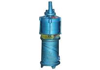 上海水侵式潜水泵